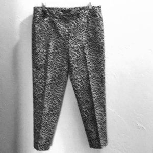 WHBM Pants